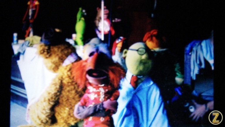 Fozzie, Floyd, Bunsen and others wrangled