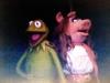 Kermit & Piggy wrangled between takes