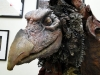 Skeksis in the LA office